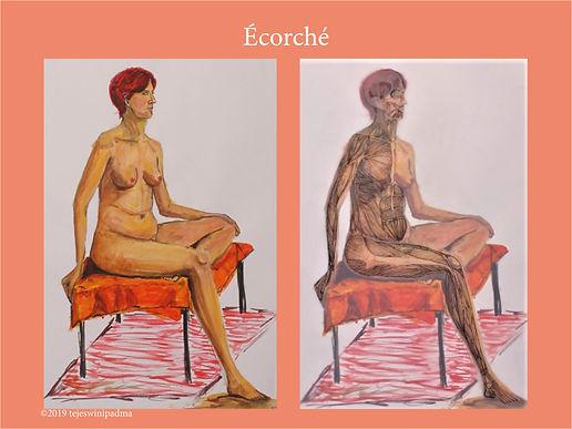 Ecorche_full_body.jpg