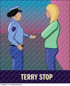 Terry Stop