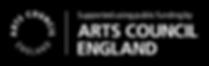 ace black logo.png