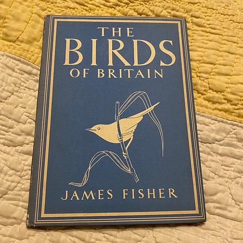 The Birds of Britain 1942 Hardback