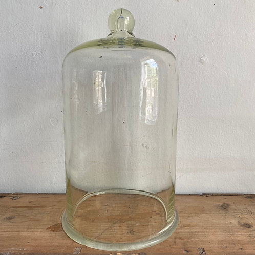 Antique Domed Glass Cloche