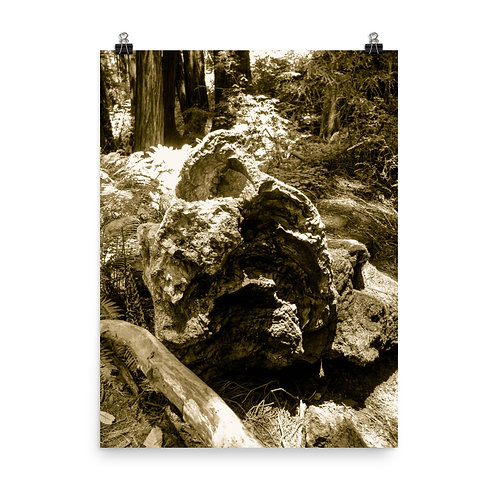 19 Inca Gold Photoprint