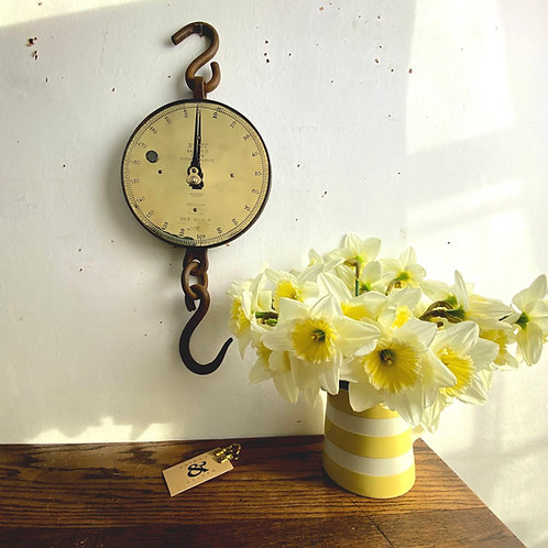 Large Antique Brass Faced Salter Hanging Scale