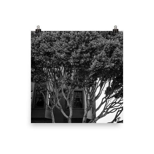 i2018 33 Photoprint