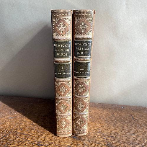 Bewick's British Birds in Two Volumes, 1832
