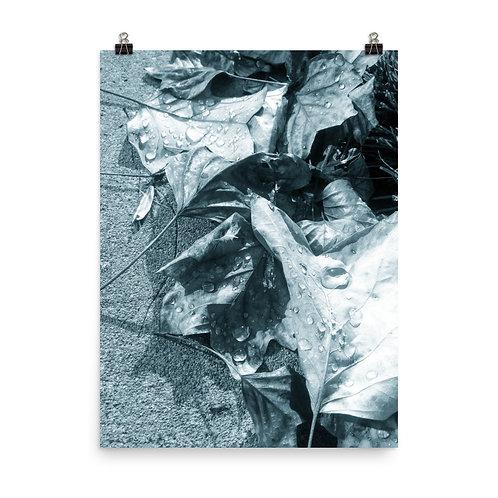 36. Venus Photoprint