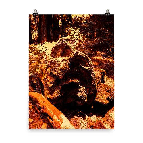 19 MARS Photoprint