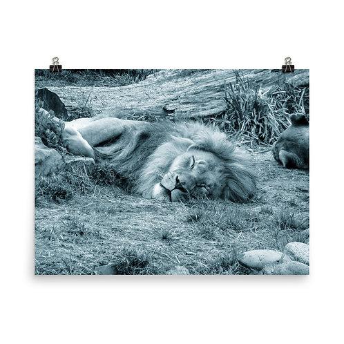 21. Venus Photoprint