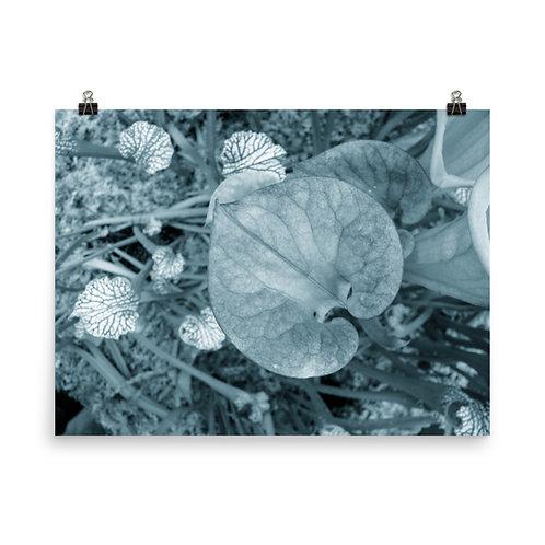 89. Venus Photoprint