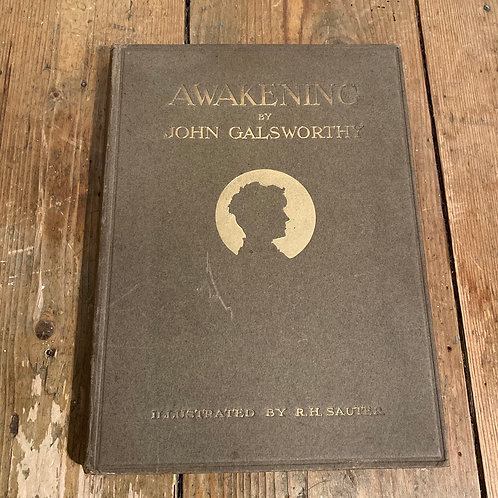 Awakening by John Galsworthy 1920