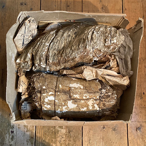 Genuine Fossilised Mammoth Tooth and Tusk Sections