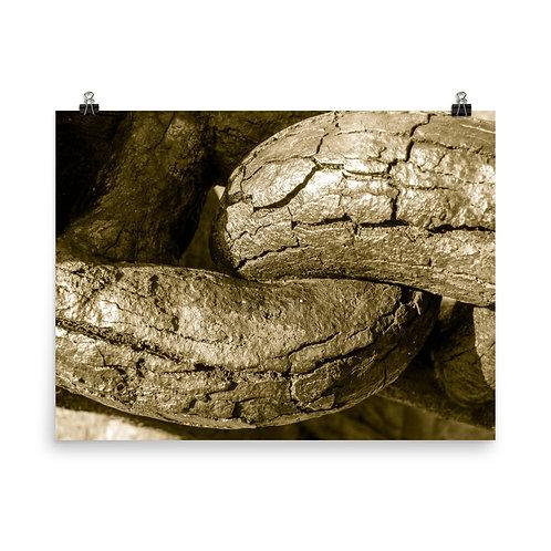 22 Inca Gold Photoprint