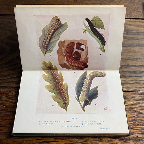 Three Natural History Books