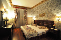 Standard Double Room (3)
