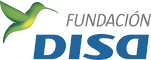 Web de Fundación DISA