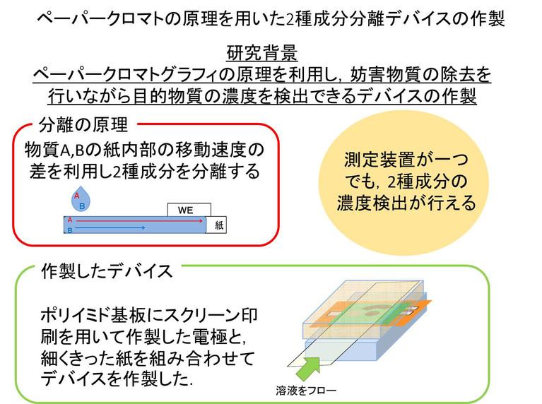 program_n.jpg
