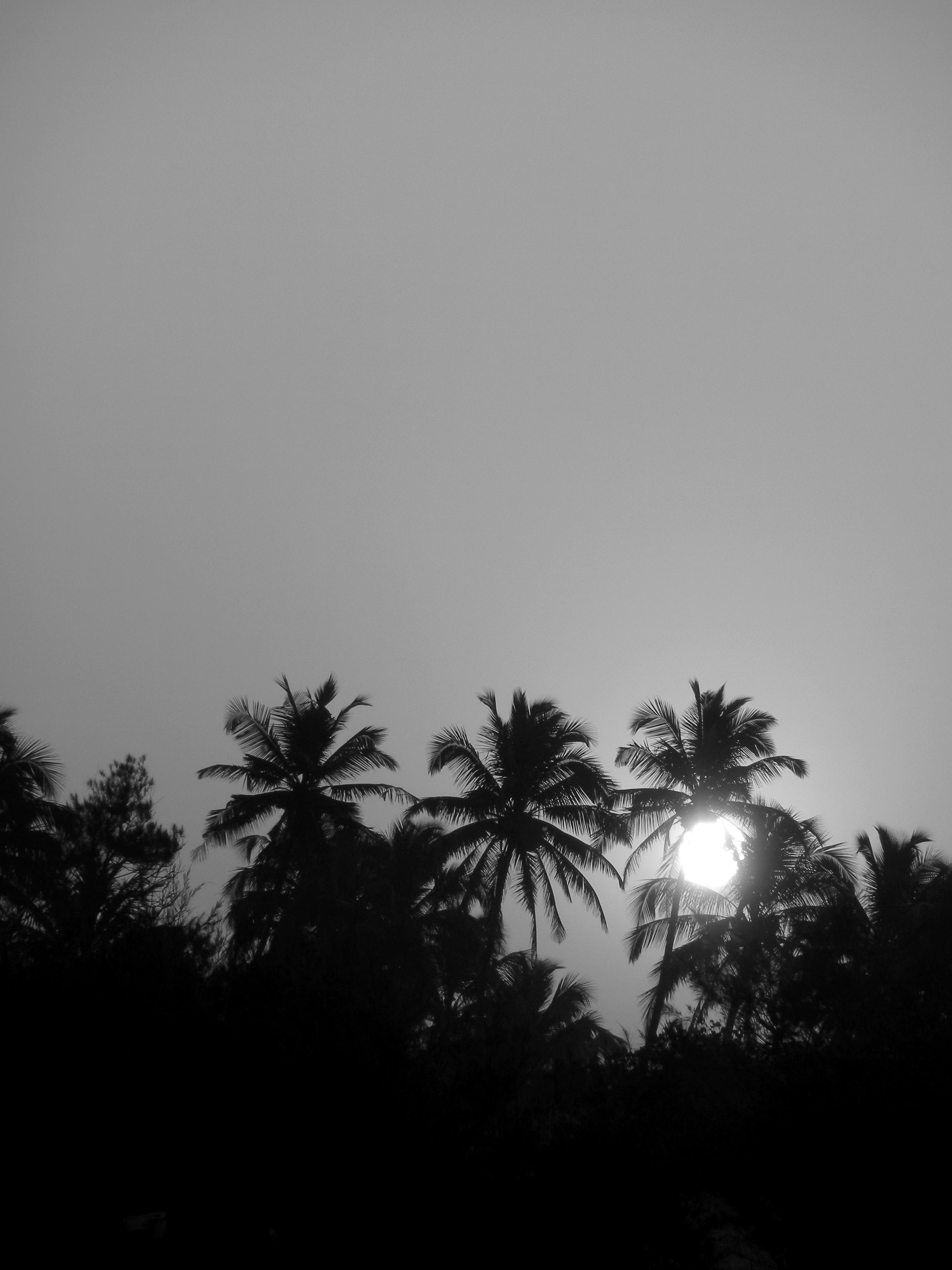 Calangute, Goa, India