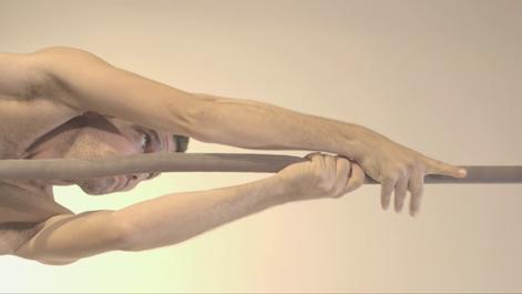 WINGSPAN (2020)   Dance Film