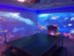 Party room ocean bottom image.JPG