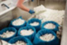 Cheese Making_06