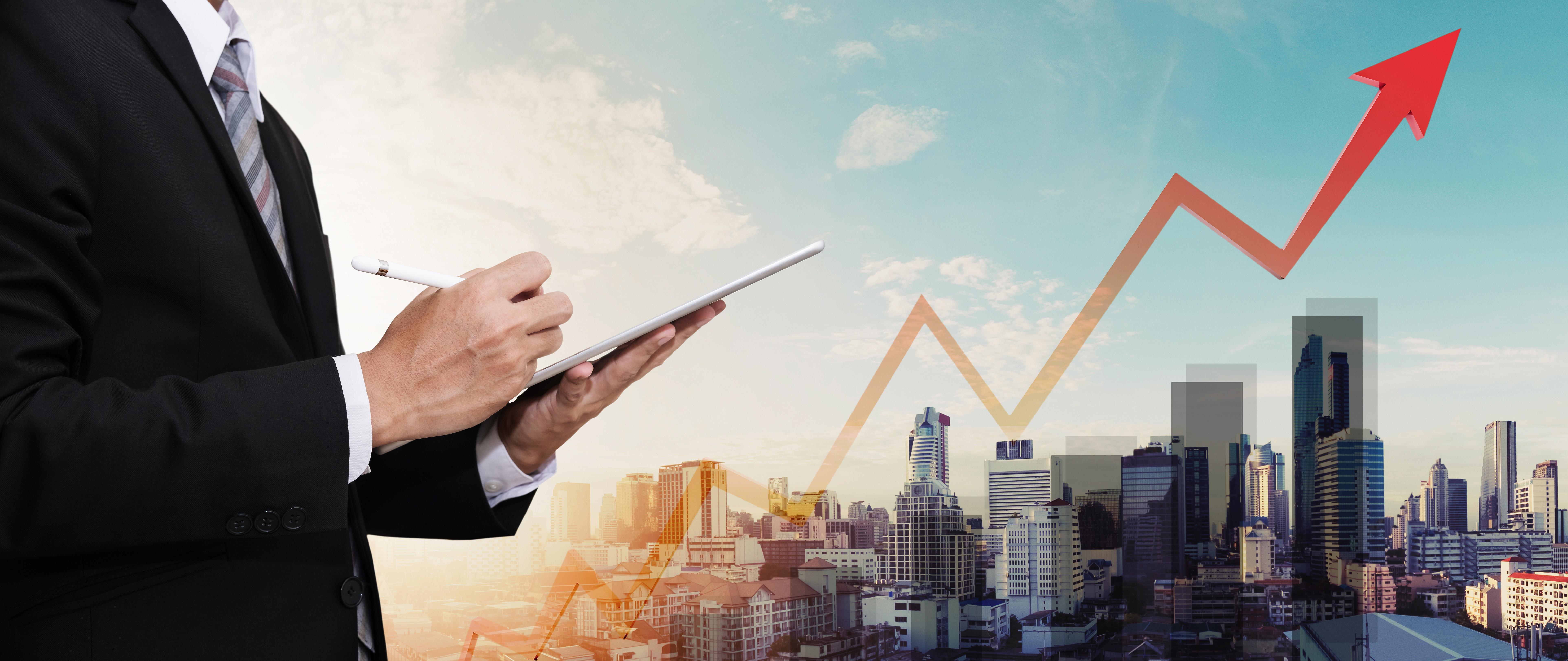 Investor Portfolio Management