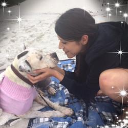Destiny's Hope Animal Rescue