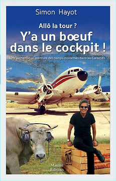 Simon Hayot, Allô la tour, Mareuil éditions