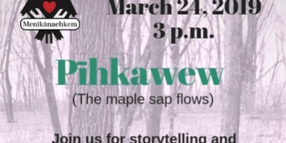 Pīhkawew (The Maple sap flows)