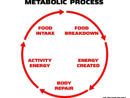 How to Increase Metabolism After 60?