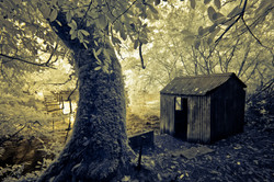 Cong River Infrared