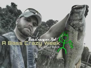 A Bass Crazy Week