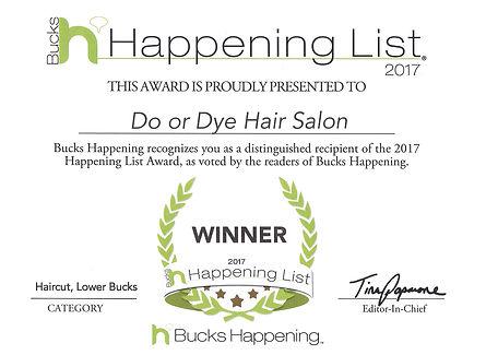 2017 Winner - Haircut
