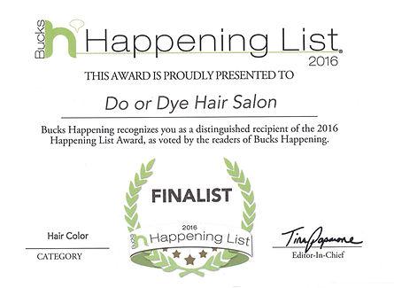2016 Finalist - Hair Color