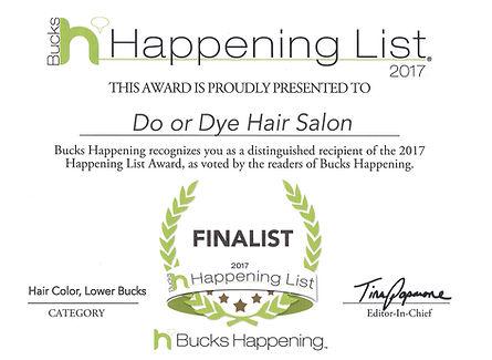 2017 Finalist - Haircut Color