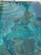 Underwater Adventure Mosaics