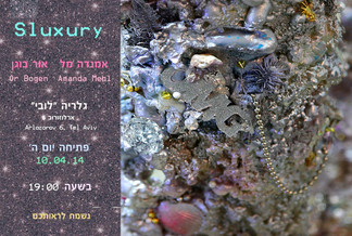 Happy to announce a new exhibition in collaboration with Or Bogen and the Lobby Art Space, Tel Aviv