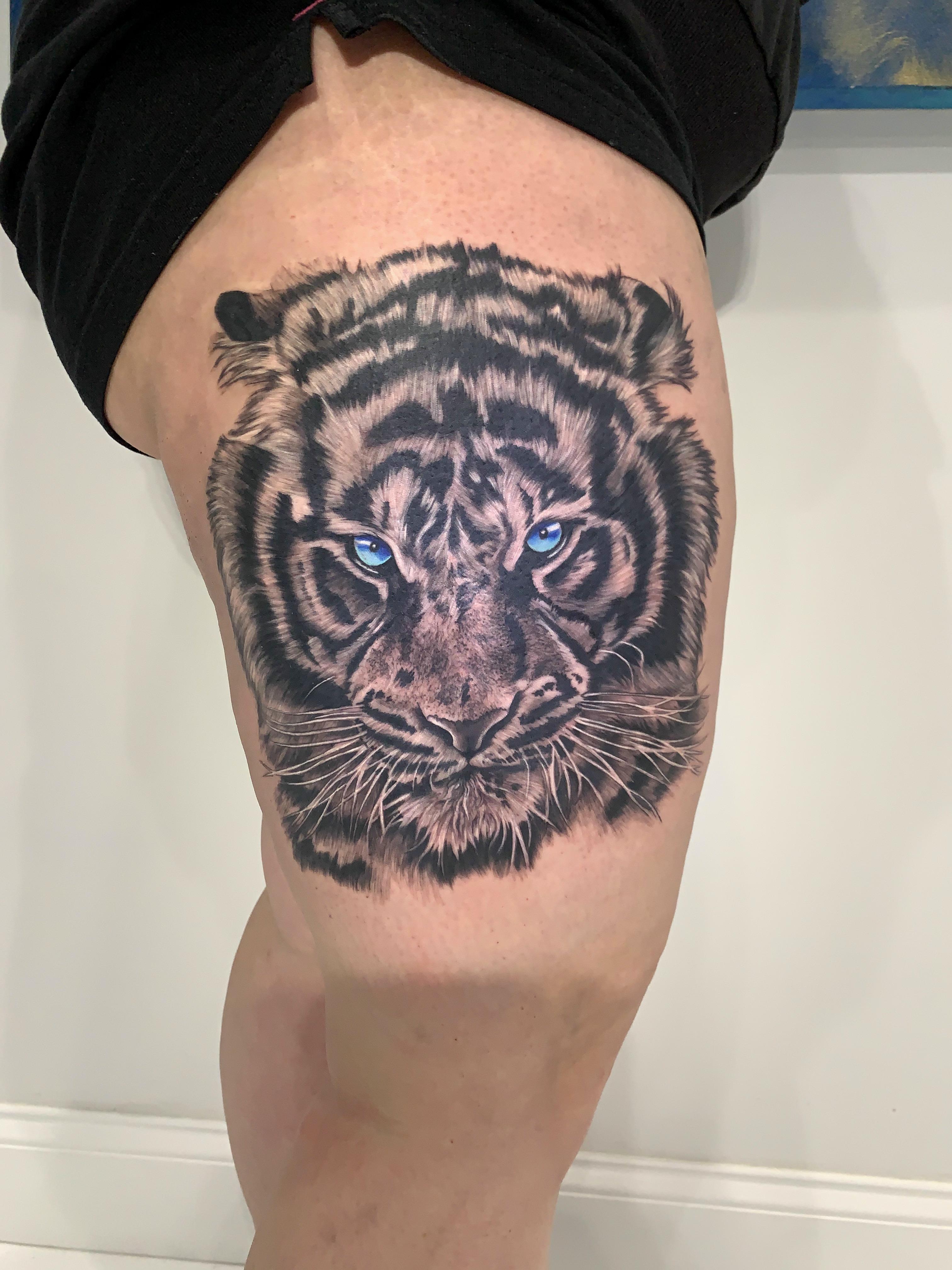 11.2020 Tiger