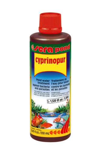 תכשיר לטיפול במחלות זיהומיות SERA-Cyprinopur 250ml