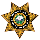 Sheriffs Office_Updated Logo 2020_USE TH