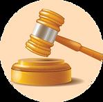 Civil Litigation-01.png
