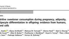 Effects of consuming artificial sweetener during pregnancy