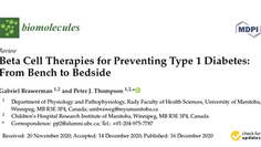 Beta cell therapies for type 1 diabetes