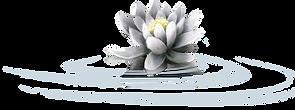 ldavi-mousemasque-lily2.png