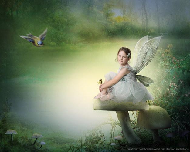 Fairy magic toadstools