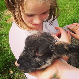 Sage and a friends pet lamb.jpg