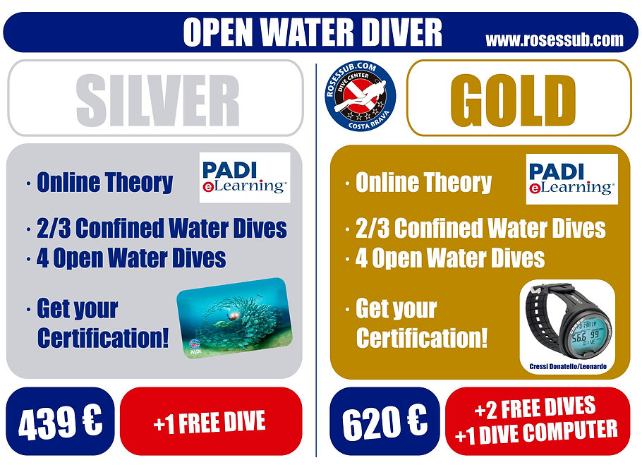OPEN WATER DIVER-options.jpg