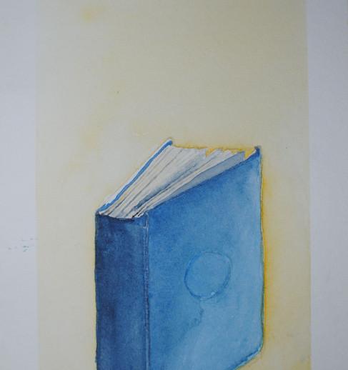 Blue Book Tripdych pt. 1