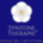 logo site web.png