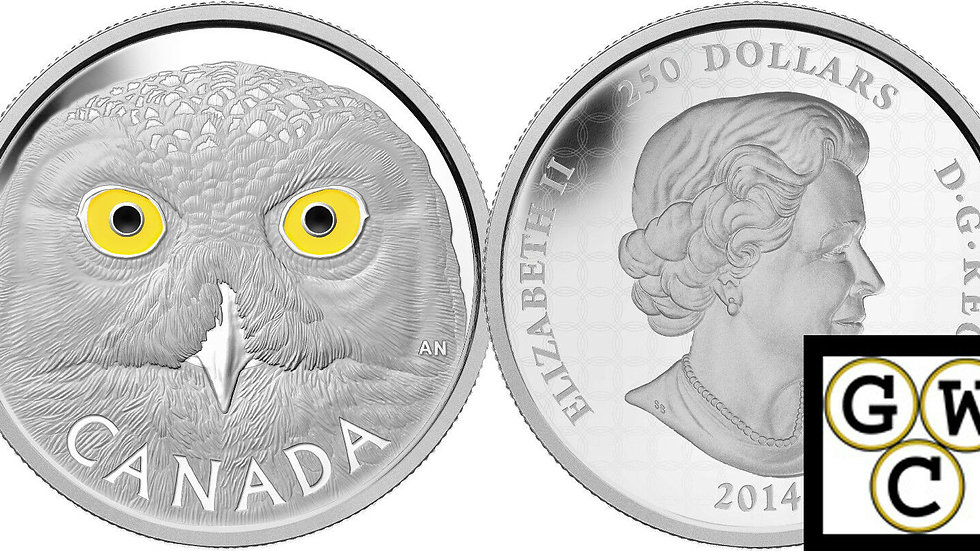 2014 Kilo Silver-In The Eyes of the Snowy Owl $250 Coin 9999 Fine