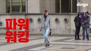 DINGO STYLE | PFW